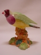 Beswick Gouldian Finch - Wings Out (1178)