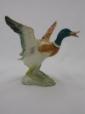 Beswick Mallard Duck - Rising (749)