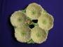 Carlton Ware Yellow/Cream Poppy 5 Way Tray
